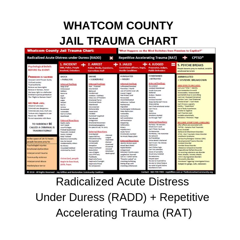 Whatcom County Jail Trauma Chart